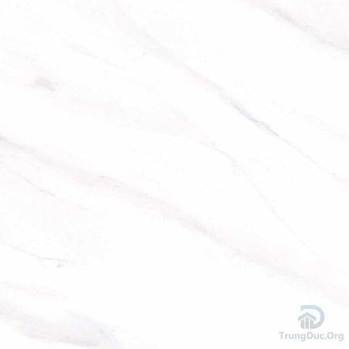 Gạch Apodio 66135030 60x60 Bán Sứ